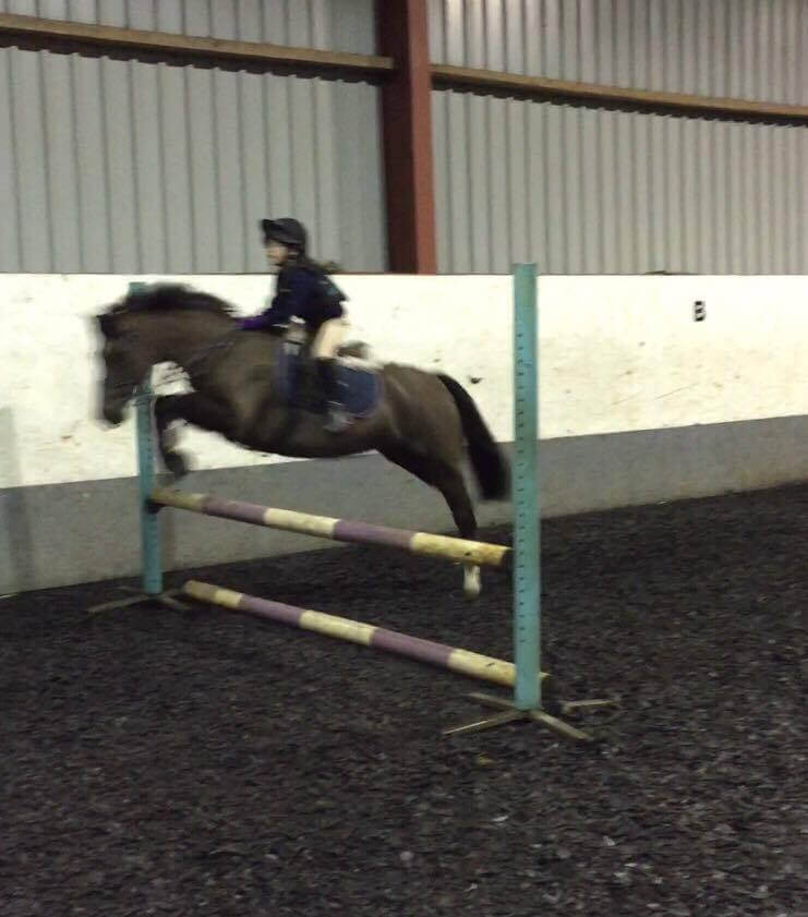 Masie Farnham showjumping on pony Magic and on a black pony inside an indoor arena at Moorhouse EC