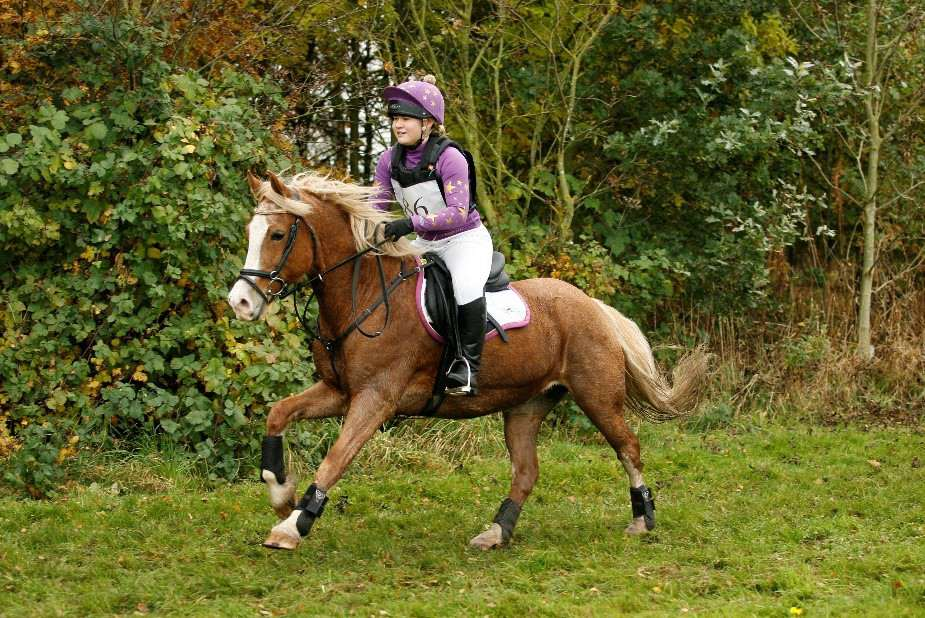 Ruth Walker riding Odelle at the Horseware National Hunter Trial Series Championship Final at Eland Lodge riding in an eventing saddle wearing a black bridle and wearing purple and yellow cross country colours with stars on XC colours on her beautiful chestnut mare