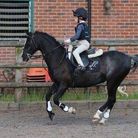 Maisie Farnham riding on her pony Louis.