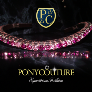 Single Pixie browband with alternating pink browband design these stunning handmade Sedgwick English leather crystal browbands will look at home on any horse