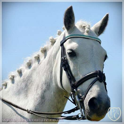 Robyn Byrne PonyCouture's sponsored riders pony Sophisticated Lady also known as Sophie wearing her turquoise crystal browband from our AmazBling range.